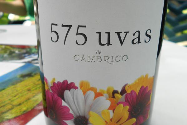 575 uvas