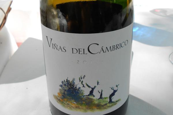 Viñas del Cámbrico 2011