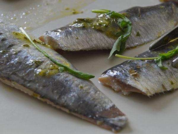 sardinas marinadas en aceite y vinagre